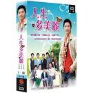人生多美麗 DVD ( 金永哲/金海淑/...