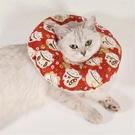 伊麗莎白圈貓軟布
