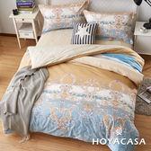 《HOYACASA皇家圖騰》加大四件式抗菌精梳棉兩用被床包組
