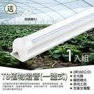免施工 T8 植物燈管規格2呎免支架 一體式鋁合金散熱器 LED全光譜 植物生長燈 買就送一插頭連接線