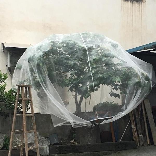 防鳥網 楊梅網罩防蟲防風水果樹罩羅幔大棚專用罩