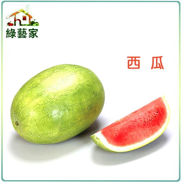 【綠藝家】I01.西瓜種子5顆