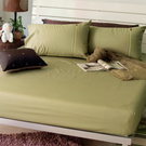 《40支紗》單人床包枕套二件式【芥末】繽紛玩色系列 100%精梳棉-麗塔LITA-