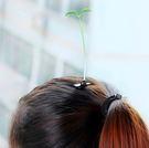 賣萌神器小草髮夾搞怪植物頭飾豆苗發卡小花豆芽頭上長草飾品