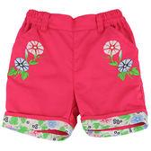 【愛的世界】純棉鬆緊帶五分褲-紅/4~8歲-台灣製- ★春夏下著