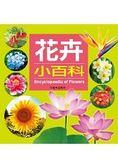 花卉小百科 兒童百科(19)