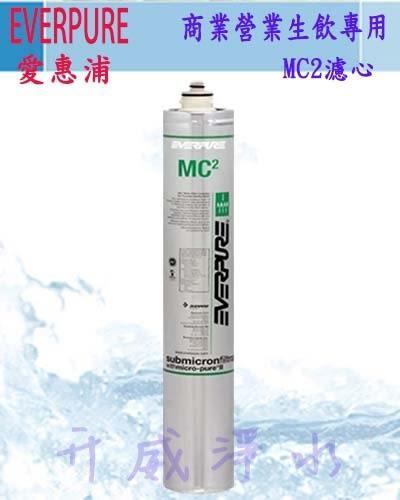 [全省免運費] EVERPURE愛惠浦公司貨商業營業用生飲設備專用MC2濾心