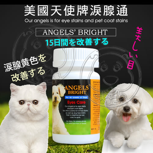 【zoo寵物商城】美國Angels Bright天使牌》狗貓淚腺通-4oz/113.2g