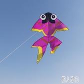 春鳶濰坊風箏大型成人新款造型微風易飛金魚風箏線輪線輪套裝 DJ12078『麗人雅苑』