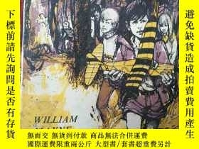 二手書博民逛書店The罕見Yellow Aeroplane【英文原版32開精裝】