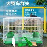 鳥籠 鳥籠鴿子籠虎皮鸚鵡文鳥八哥繡眼百靈鳥籠子大號超大繁殖養殖家用 伊芙莎YYS