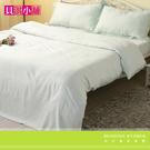 【貝淇小舖】TENCEL 頂級100%天絲《薄荷花園》標準雙人床包薄被套四件組~