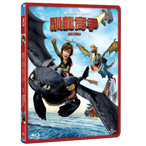 馴龍高手 (BD)How to Train Your Dragon (BD)