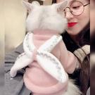超火網紅天使貓咪衣服毛衣幼貓小奶貓無毛貓防掉毛寵物秋冬裝