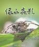 二手書R2YBd1 96年12月出版《綠水蟲影》黃清波 太魯閣國家公園管理處