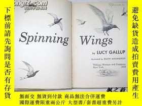 二手書博民逛書店【英文原版】Spinning罕見Wings by Lucy Ga