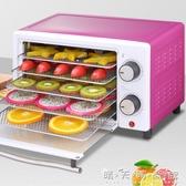 220V干果機食物脫水風干機家用小型水果蔬菜寵物肉類食品烘干機WD 晴天時尚館