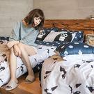 床包兩用被組 / 雙人【灰藍紳士款-掰啾的幽默】含兩件枕套  100%精梳棉  戀家小舖台灣製AAL215