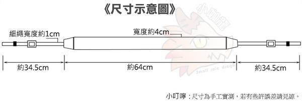 單眼 相機背帶 背帶 掛脖 旅行風 簡約風 條紋 SONY NEX 5T 5R A5100 A5000 A6000 A6100 A6300 A6400 A6500 A6600