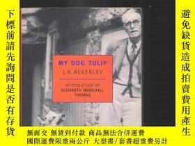 二手書博民逛書店英語小說罕見My Dog Tulip   J.R.Ackerle