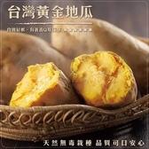 【果之蔬-全省免運】台農57號黃地瓜(5台斤±10%/平裝箱)