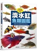 淡水缸魚類圖鑑:從設置水族缸到選擇完美魚類的完整百科!