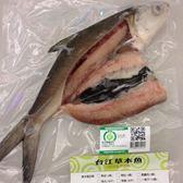 台江漁人港  草本雙刀流虱目魚(全魚)(12兩/隻)--需預定