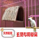 鳥窩玄鳳鸚鵡專用窩繁殖孵化睡覺大型冬天保暖懸掛式鳥窩小金太陽和尚 智慧 618狂歡