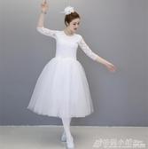 芭蕾舞裙成人女兒童芭蕾練功服半袖舞蹈網紗裙小天鵝蓬蓬裙演出服 格蘭小舖