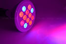 LED植物燈12W E27...