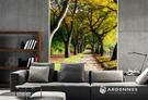 【ARDENNES】防水壁貼 壁紙 牆貼 / 霧面 亮面 / 森林系列 NO.M046