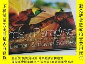 二手書博民逛書店Birds罕見of Paradise: Revealing the World s Most Extraordin