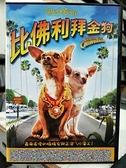 挖寶二手片-C08-009-正版DVD-電影【比佛利拜金狗】-茱兒芭莉摩 莎瑪海耶克 潔美李寇蒂斯(直購價)