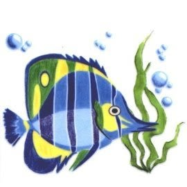 美飾海魚轉印膠片10*10cm(6入)