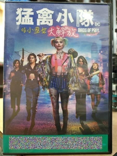 挖寶二手片-T04-329-正版DVD-電影【猛禽小隊:小醜女大解放】瑪格羅比 DC(直購價)