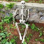 骷髏骨架干尸擺件密室逃脫道具鬼屋裝飾仿真頭萬圣節恐怖尸體模型