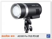 GODOX 神牛 AD300 PRO TTL 閃光燈 外拍燈(AD300PRO,公司貨)攝影燈 補光燈 持續燈