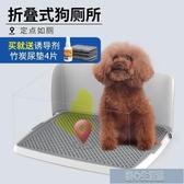 狗狗廁所帶墻壁可摺疊泰迪金毛狗尿盆小便盆小型犬大號小號狗用品 快速出貨YJT