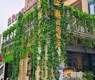 仿真藤條假花葡萄葉樹葉綠葉綠植物吊頂裝飾管道塑料藤蔓纏繞花藤 3C優購