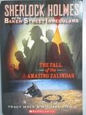 【書寶二手書T7/原文小說_MEQ】Fall of the Amazing Zalindas_Mack, Tracy/