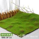 仿真青苔蘚草皮仿真草坪植物景觀綠色植物場景櫥窗展示盆景假苔蘚 俏girl YTL