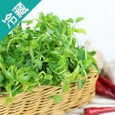 【台灣】鮮嫩豌豆嬰1盒(150g/盒)【愛買冷藏】