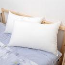 透氣輕柔TENCEL天絲枕 奧地利進口原料 台灣製 42x72cm 枕頭
