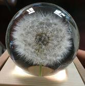 蒲公英標本水晶球音樂盒木質八音盒教師節情人節生日禮物創意禮品 初語生活igo