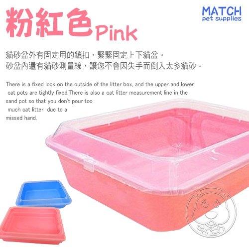 📣此商品48小時內快速出貨🚀》 駿寶》B19-671果凍簡易單層貓砂盆小-40x30x11cm(限宅配)