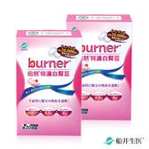 即期-【船井】burner倍熱 特濃白腎豆30顆_2盒組-2020.11.20