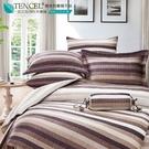 LUST生活寢具【奧地利天絲-紳士格調】100%天絲、雙人5尺床包/枕套/舖棉被套組  TENCEL 萊賽爾纖維
