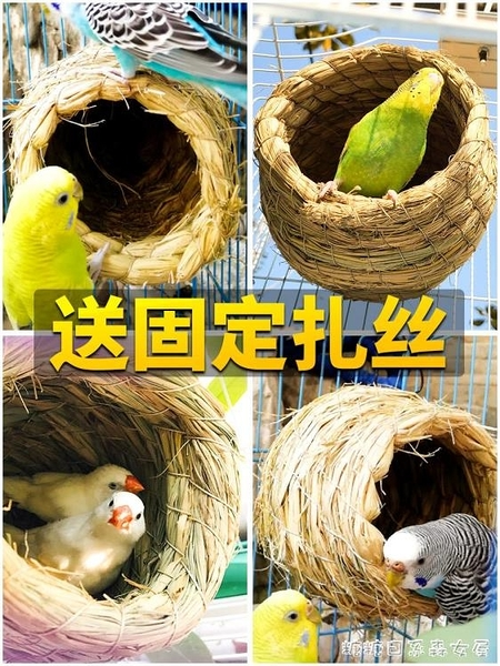 草編鳥窩珍珠玄鳳虎皮牡丹鸚鵡用品鳥具掛窩小鳥窩鳥巢草窩繁 【快速出貨】