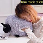 手捂 手暖抱枕暖手捂可插手午睡枕羊駝
