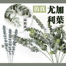 【05038】 仿真北歐風尤加利葉 拍照背景 假花 裝飾 仿真花 插花